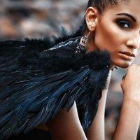 черный ангел :: МАКСИМ ШИ