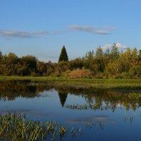 Озеро в сентябре :: Вера Андреева