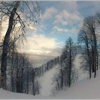 Зимняя рапсодия :: алексей афанасьев
