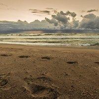 Пляж :: Владимир Самсонов