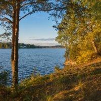 Вечером на озере :: vladimir Bormotov