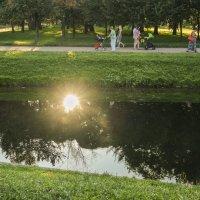 Летний вечер в саду :: Aнна Зарубина