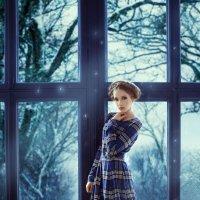 зима :: Ольга Зимницкая