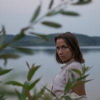 FOTOKVARTIRNIK_PERSIIDA :: Артем Плескацевич