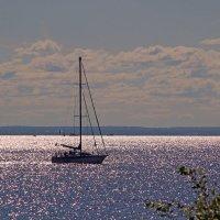Финский залив :: ирина Пронина
