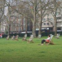 отдых в Грин парке :: Тарас Золотько