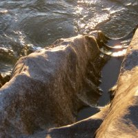 Камни выточенные водой.Гуляевский порог. :: Любовь Иванова