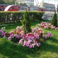 Вокзал в Туле :: Вера Щукина