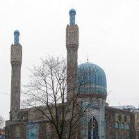 Мечеть в Санкт-Петербурге :: Вера Щукина