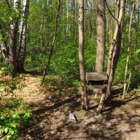 Воспоминание о самом солнечном дне весны :: Андрей Лукьянов