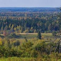 Осень на севере Удмуртии :: Владимир Максимов
