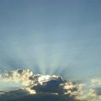 Солнце спряталось за тучку.... :: nadyasilyuk Вознюк