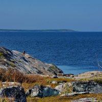 по другую сторону острова :: Валентина Папилова