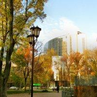 Осень в солнечных лучах... :: Тамара (st.tamara)