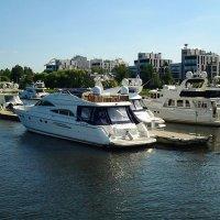 Яхт клуб на Крестовском острове.Санкт-Петербург. :: Жанна Мааита