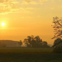 Уж солнце высоко поднялось.... :: Юрий. Шмаков