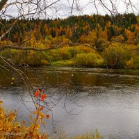 Осень нагрянула :: Виктор Бондаренко