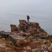 Скала. Баренцево море :: Оксана Пучкова