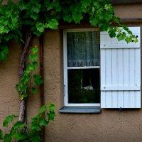 "Из серии ""Окна"".. :: Dan Berli"