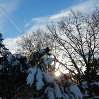 Вспоминая зиму... :: Юрий Поляков
