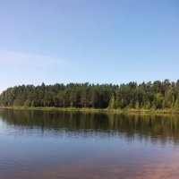 Река Оредеж. :: Жанна Викторовна