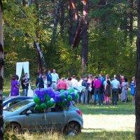 Лесная свадьба :: Александр Попов