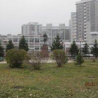 А Ноябрь был, седым и неуютным.... :: Tatyana Kuchina
