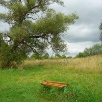 Пейзаж с лавочкой. :: Александр Атаулин
