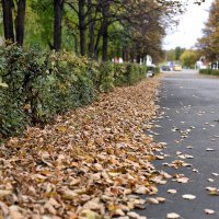 Снова осень :: Александр