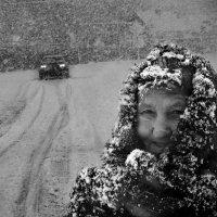 Вечерний снегопад :: Владимир Дядьков