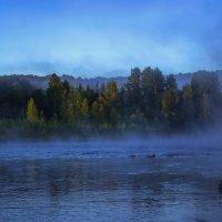 За синими туманами живут мои мечты.  Там мысли и желания понятны и чисты. :: Альмира Юсупова