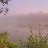 Туманное утро :: Валерий Козуб
