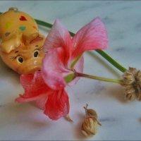 Ммм... Обожаю запах герани! :: Нина Корешкова