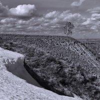 Апрельский снег :: Виктор Четошников