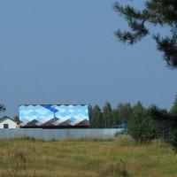 лес и такая крыша :: Сергей Цветков