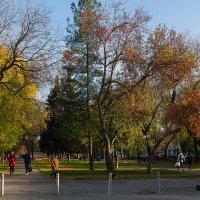 Осень в городе. :: Валерий Молоток