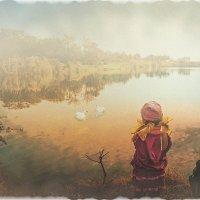 Лебединое озеро :: Olga Zhukova