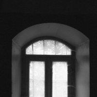Окно :: Ignis Avis