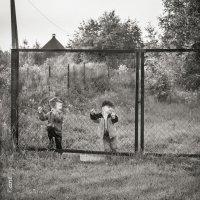 детки в клетке :: Nastya Tretyakova