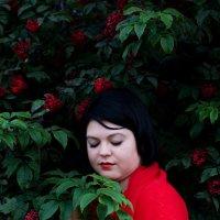 Краски осени. Красный :: Tanya Mukhgaleeva