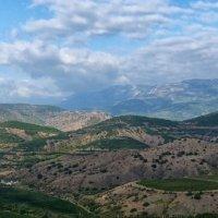 Виноградники в горах :: Константин Снежин