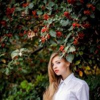 Червоне то любовь... :: Екатерина Гусева