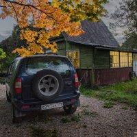 Осенний вечер... :: Ирина Шарапова