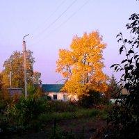 Начало Осени :: Милла Корн