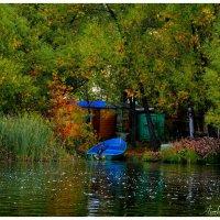 Яркие краски осени :: Анжелика Фёдорова