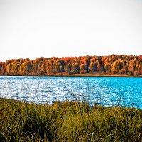 Осеннее озеро :: Светлана