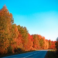 просто Осень :: Светлана