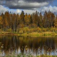 Золотая осень :: mr. mulla
