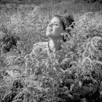 Наслаждаясь солнцем :: Татьяна Мордвинова
