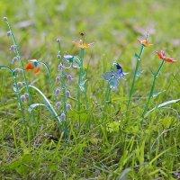 Стеклянные цветы в траве блестят... :: Михаил Лесин